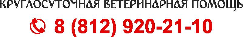 Круглосуточная ветеринарная помощь в Санкт-Петербурге